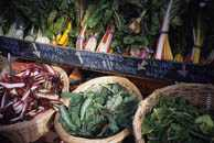 Chard Crop in Baskets for Sale